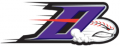 Winston-Salem Dash 2009-Pres Cap Logo 2 iron on sticker