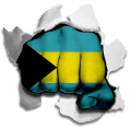 Fist Bahamas Flag Logo decal sticker