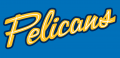 Myrtle Beach Pelicans 2007-Pres Jersey Logo 2 iron on sticker
