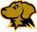 UMBC Retrievers 2010-Pres Secondary Logo iron on sticker