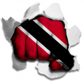 Fist Trinidad And Tobago Flag Logo decal sticker