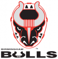 Birmingham Bulls 2017 18-Pres Primary Logo iron on sticker