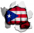 Fist Puerto Rico Flag Logo decal sticker