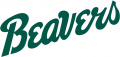 Bemidji State Beavers 2004-Pres Wordmark Logo decal sticker