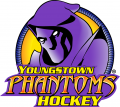 Youngstown Phantoms 2014 15-Pres Primary Logo decal sticker
