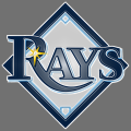 Tampa Bay Rays Plastic Effect Logo iron on sticker