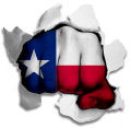 Fist Texas State Flag Logo decal sticker