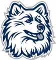 UConn Huskies 1996-2012 Alternate Logo 07 iron on sticker