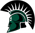 USC Upstate Spartans 2003-2008 Primary Logo iron on sticker