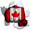 Fist Canada Flag Logo decal sticker