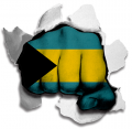 Fist The Bahamas Flag Logo decal sticker