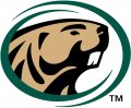 Bemidji State Beavers 2004-Pres Primary Logo decal sticker