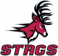 Fairfield Stags 2002-Pres Alternate Logo 03 iron on sticker
