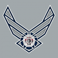 Airforce Winnipeg Jets Logo decal sticker