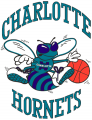 Charlotte Hornets 1988 89-2001 02 Primary Logo iron on sticker