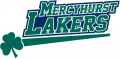 Mercyhurst Lakers 2009-Pres Primary Logo decal sticker