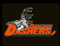 Danville Dashers 2014 15-Pres Alternate Logo decal sticker