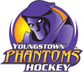 Youngstown Phantoms 2012 13-2013 14 Primary Logo decal sticker