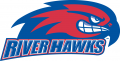 UMass Lowell River Hawks 2005-Pres Secondary Logo decal sticker