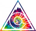 Colorado Avalanche rainbow spiral tie-dye logo decal sticker