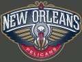 New Orleans Pelicans Plastic Effect Logo decal sticker