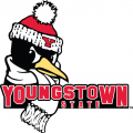 Youngstown State Penguins 2006-Pres Secondary Logo iron on sticker