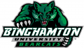 Binghamton Bearcats 2001-Pres Primary Logo iron on sticker