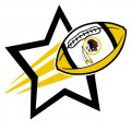 Washington Redskins Football Goal Star logo iron on sticker