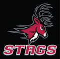 Fairfield Stags 2002-Pres Alternate Logo 01 iron on sticker