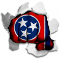Fist Tennessee State Flag Logo decal sticker