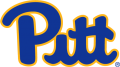 Pittsburgh Panthers 2019-Pres Primary Logo decal sticker