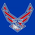 Airforce New York Rangers Logo decal sticker
