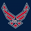 Airforce Washington Capitals Logo decal sticker