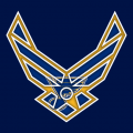 Airforce St. Louis Blues Logo decal sticker