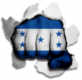Fist Honduras Flag Logo decal sticker