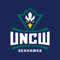 NC-Wilmington Seahawks 2015-Pres Alternate Logo 02 decal sticker