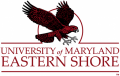 Maryland-Eastern Shore Hawks 2007-Pres Alternate Logo 02 iron on sticker