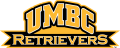 UMBC Retrievers 2010-Pres Wordmark Logo iron on sticker