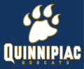 Quinnipiac Bobcats 2002-2018 Wordmark Logo iron on sticker