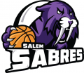 Salem Sabres 2013-Pres Primary Logo iron on sticker