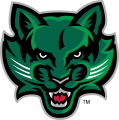 Binghamton Bearcats 2001-Pres Secondary Logo 03 iron on sticker