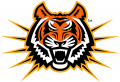 Idaho State Bengals 1997-2018 Alternate Logo 06 decal sticker