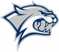 New Hampshire Wildcats 2000-Pres Secondary Logo 01 decal sticker