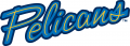 Myrtle Beach Pelicans 2007-Pres Jersey Logo iron on sticker