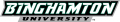 Binghamton Bearcats 2001-Pres Wordmark Logo 04 iron on sticker