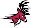 Fairfield Stags 2002-Pres Partial Logo iron on sticker