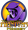 Youngstown Phantoms 2003 04-2011 12 Primary Logo decal sticker