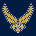 Airforce Nashville Predators Logo decal sticker