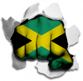 Fist Jamaica Flag Logo decal sticker
