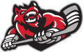 Huntsville Havoc 2016 17-Pres Secondary Logo iron on sticker